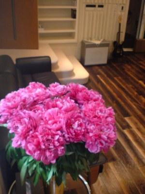 FLOWER IN THE STUDIO2.jpg