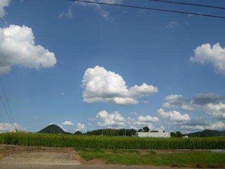 summer sky.jpg