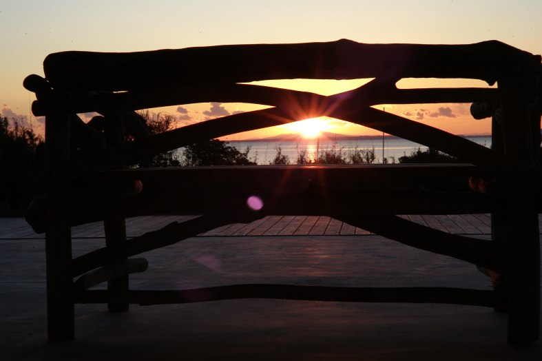 NY SUNSET BENCH.jpg