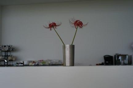 higanbana.jpg